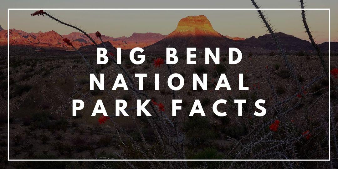 Big Bend National Park Facts_Trekkerr